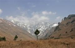 <p>Dachigam national park is seen on the outskirts of Srinagar in this general view November 12, 2009. REUTERS/Fayaz Kabli</p>