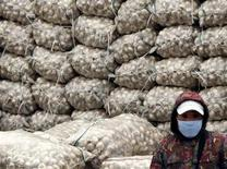 <p>A market vendor, wearing a face mask, stands in front of a large pile of sacks containing garlic at an outdoor food market in Beijing November 25, 2009. REUTERS/David Gray</p>