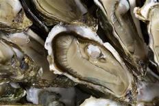 <p>Oysters are presented by oyster farms near Bordeaux, August 21, 2009. REUTERS/Olivier Pon</p>