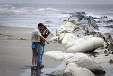 <p>Científicos revisan una playa en Port Fourchon, Luisiana, mayo 13 2010. REUTERS/Lee Celano (UNITED STATES)</p>