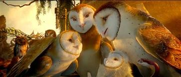 """<p>A scene from the film """"Legend of the Guardians: The Owls of Ga'Hoole""""; a Warner Bros. release. REUTERS/Warner Bros. Pictures</p>"""