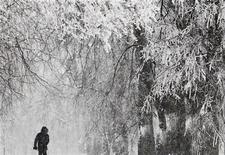 <p>Мужчина идет по заснеженной улице в Москве 29 декабря 2010 года. Москвичей в грядущие выходные ждет мокрый снег, а температура воздуха по сравнению с рабочей неделей почти на изменится, ожидают синоптики. REUTERS/Denis Sinyakov</p>