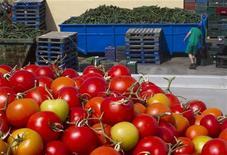 <p>Партия огурцов и помидоров, которую фермер не смог продаать в испанском городе Эль-Эхидо 1 июня 2011 года. Немецкий Центр по контролю и профилактике заболеваний сообщил в среду о 365 новых случаях заражения кишечной инфекцией, пока ученые пытаются выявить источник смертоносного заболевания. REUTERS/Francisco Bonilla</p>