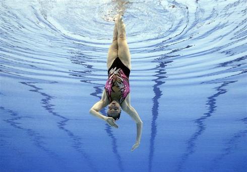 World aquatic championships