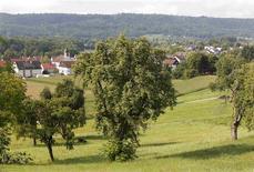 <p>A general view shows the German village of Buesingen August 25, 2011. REUTERS/Arnd Wiegmann</p>