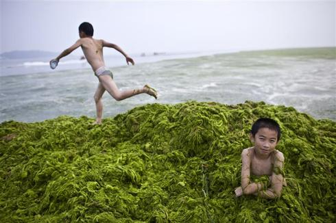 China's slimy beach