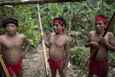 Rare Amazon encounter
