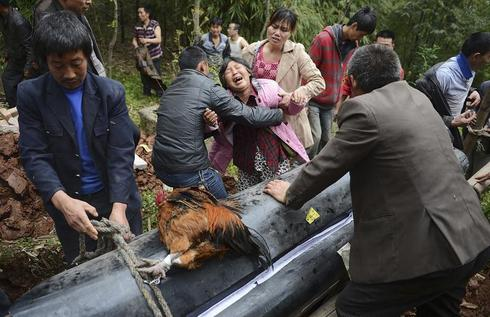 Quake hits China