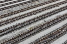 La compagnie ferroviaire allemande Deutsche Bahn a engagé des poursuites judiciaires contre plusieurs entreprises sidérurgiques dont ArcelorMittal qu'elle accuse d'avoir surfacturé des traverses de chemin de fer sur une péroide de 18 ans. /Photo d'archives/      REUTERS/Michaela Rehle