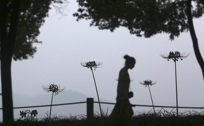 A visitor walks past blossoming flowers beside the West Lake in Hangzhou, Zhejiang province, September 7, 2013. REUTERS/Chance Chan