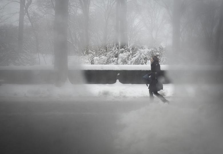 A woman is pictured though a steamy bus window as she walks along 5th Avenue at Central Park in New York February 5, 2014.  REUTERS/Carlo Allegri