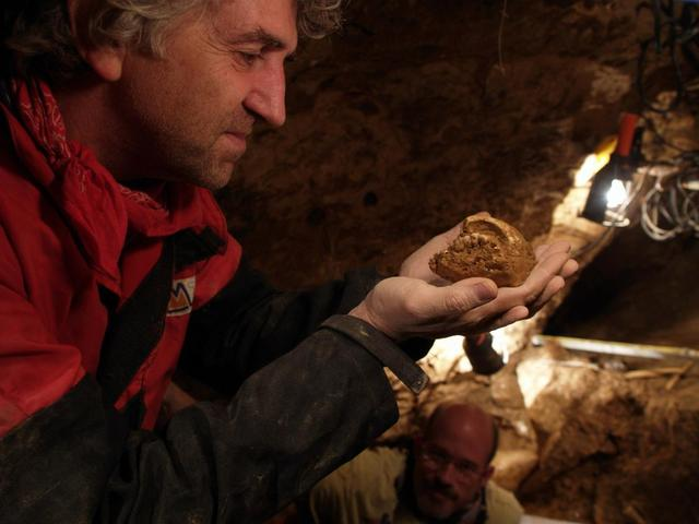 Professor Juan Luis Arsuaga examines an artefact in this undated handout picture taken at the Sima de los Huesos site in Sierra de Atapuerca, Spain. REUTERS/Copyright Javier Trueba/Madrid Scientific Films/Handout via Reuters