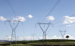 Torres de transmissão de energia sobre plantação de café em Santo Antônio do Jardim. 06/02/2014 REUTERS/Paulo Whitaker