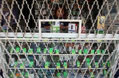 Una empleada en una tienda de teléfonos móviles en Ciudad de México, oct 20 2009. El regulador de telecomunicaciones de México dijo el miércoles que inició una investigación por posibles prácticas monopólicas relativas en los mercados de distribución y comercialización de recargas para telefonía móvil. REUTERS/Daniel Aguilar