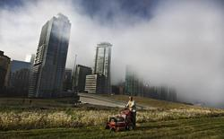 Morning fog drifts across downtown as landscaper Graham Reid cuts the grass on top of the Vancouver Convention Centre's living roof in Vancouver, British Columbia October 17, 2013. REUTERS/Andy Clark