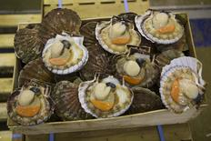 Scallops are seen at the fish pavillion at Rungis International food market as buyers prepare for the holiday season in Rungis, south of Paris, December 11, 2014. REUTERS/Philippe Wojazer