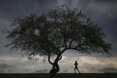 A woman is seen jogging at Cunningham Park in the borough of Queens in New York in this file photo taken on September 16, 2014.  REUTERS/Shannon Stapleton