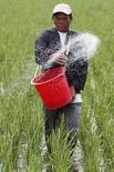 Фермер удобряет рисовое поле в Лос-Баносе, к югу от Манилы 30 августа 2012 года. Российский агрохимический холдинг Фосагро, второй по величине производитель фосфорных удобрений в мире, по итогам 2014 года увеличил производство удобрений на 3,7 процента,а общий объем их продаж вырос на 2,7 процента, сообщила компания в понедельник. REUTERS/Cheryl Ravelo (