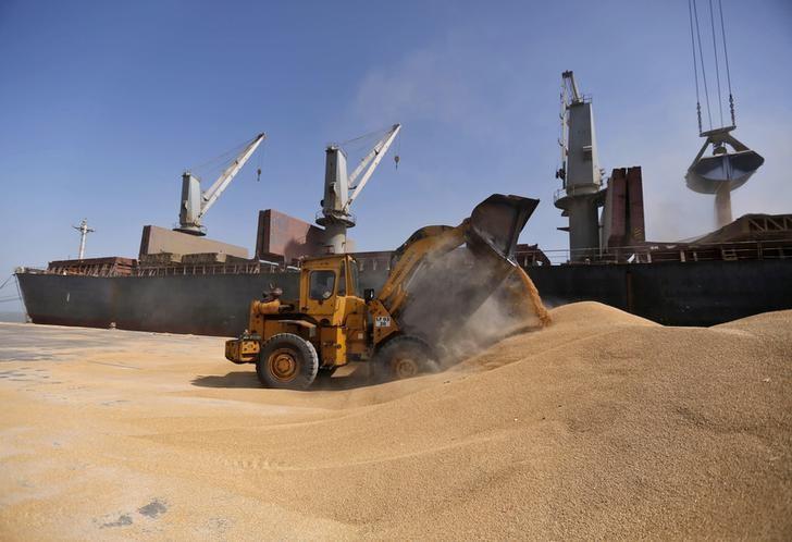 South Asia dominates Ukrainian wheat exports so far 2017/18
