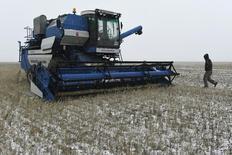 Una cosechadora en un trigal en Pavlodar, Kazajistán, oct 29 2014. La producción mundial de maíz caería en un 5 por ciento el periodo 2015/2016 desde los niveles récord de esta temporada, mientras que la cosecha global de trigo bajaría en un 2 por ciento, estimó el jueves el Consejo Internacional de Cereales (CIC). REUTERS/Vladimir Bugayev