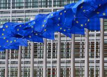 La Commission européenne a présenté vendredi ses exigences en termes d'environnement et de droit du travail pour le projet de Partenariat transatlantique de commerce et d'investissement (TTIP), un traité de libre-échange en discussion avec les Etats-Unis. La lutte contre le travail des enfants et l'exploitation illégale des forêts figurent notamment parmi les dispositions soumises par l'Union européenne à son partenaire américain. /Photo d'archives/REUTERS/Yves Herman