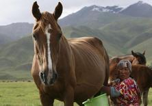 Женщина доит лошадь на высокогорном пастбище в 170 километрах к югу от Бишкека 17 июня 2011 года. Киргизия депортировала работавшего на крупнейшем золотом руднике британца после неудачной шутки про национальное блюдо в соцсетях, сообщили власти. REUTERS/Vladimir Pirogov