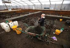 Arqueóloga britânica da Universidade de Cambridge trabalha em local onde foram descobertas casas da Idade do Bronze perto de Peterborough. 12/01/2016 REUTERS/Peter Nicholls