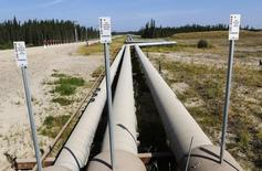 Pipelines carrying steam to wellheads and heavy oil back to the processing plant line the roads and boreal forest at the Cenovus Energy Christina Lake Steam-Assisted Gravity Drainage (SAGD) project 120 km (74 miles) south of Fort McMurray, Alberta, in this August 15, 2013 file photo. REUTERS/Todd Korol