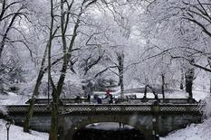 A horse carriage crosses a bridge in Manhattan's Central Park during a snowfall in New York City, February 5, 2016. REUTERS/Rickey Rogers