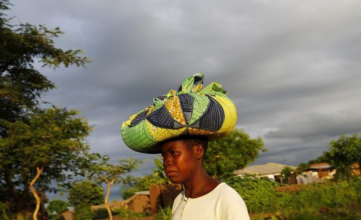 Rain clouds loom as Malawian subsistence farmer Louise Abele carries maize she has bought to feed her family near the capital Lilongwe, Malawi January 31, 2016.  REUTERS/Mike Hutchings/Files