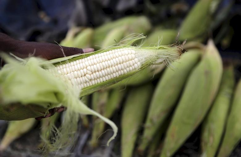 A hawker prepares a cob of corn at his makeshift shop in Soweto, in this January 27, 2016 file photo.  REUTERS/Siphiwe Sibeko/Files