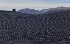 Вид на солнечные панели в Ле-Ме, Франция 31 марта 2015 года. Столкнувшийся с удешевлением нефти Оман готов поощрять выработку жителями страны электроэнергии с помощью солнечных панелей и интеграцию их в государственную энергосистему, сказал в понедельник глава Управления по регулированию электроэнергии Омана Каис аль-Заквани.  REUTERS/Jean-Paul Pelissier