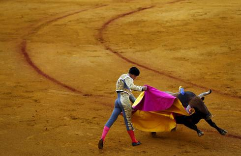 Bullfight in Seville