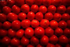 Imagen de archivo de unos tomates en el mercado de La Merced en ciudad de México, ene 31, 2013. La inflación interanual de México se moderó hasta abril, debido principalmente a una baja en los precios de productos agropecuarios y en los de energéticos y tarifas autorizadas por el Gobierno, dijo el lunes el instituto nacional de estadística, INEGI.  REUTERS/Tomas Bravo