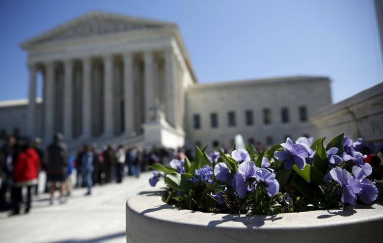 Spring flowers bloom in front of the U.S. Supreme Court in Washington March 29, 2016. REUTERS/Gary Cameron