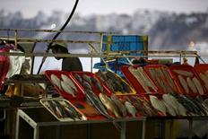 Peces a la venta en el mercado Pescadores de Chorrillos, Perú, oct 27, 2015. La economía peruana habría crecido un 3,65 por ciento interanual en abril, menos que el mes anterior, porque un avance del clave sector de minería fue contrarrestado por un desplome de la producción pesquera, mostró el lunes un sondeo de Reuters.  REUTERS/Mariana Bazo