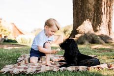 Britain's Prince George is seen with the family pet dog, Lupo, in this photograph taken in mid-July at his home in Norfolk and released by Kensington Palace to mark his third birthday, in London, Britain July 22, 2016.  Matt Porteous/Duke and Duchess of Cambridge/Handout via REUTERS