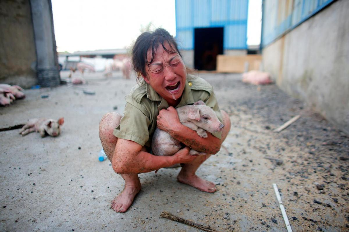 Heavy rain in China kills at least 87, thousands evacuated