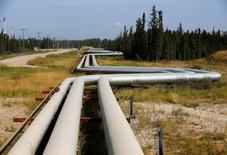 Pipelines carrying steam to wellheads and heavy oil back to the processing plant line the roads and boreal forest at the Cenovus Energy Christina Lake Steam-Assisted Gravity Drainage (SAGD) project 120 km (74 miles) south of Fort McMurray, Alberta, August 15, 2013. REUTERS/Todd Korol
