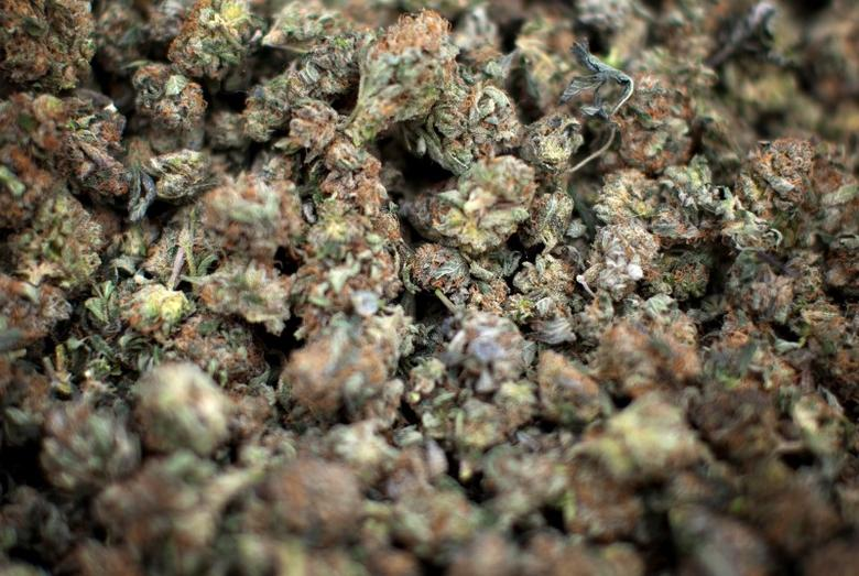 Marijuana is pictured for sale during the annual 4/20 day, which promotes the use of marijuana,  in Vancouver, British Columbia April 20, 2013.  REUTERS/Ben Nelms