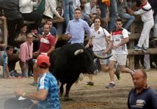 "Revellers run in front of a bull, named ""Pelado"" during the Toro de la Pena, formerly known as Toro de la Vega (Bull of the Plain) festival, in Tordesillas, Spain, September 13, 2016. REUTERS/Andrea Comas"