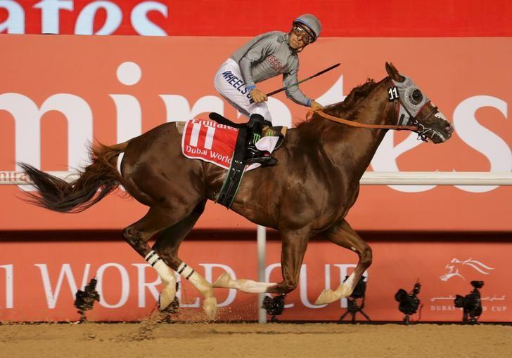 California Chrome Installed As Hot Classic Favorite Reuters