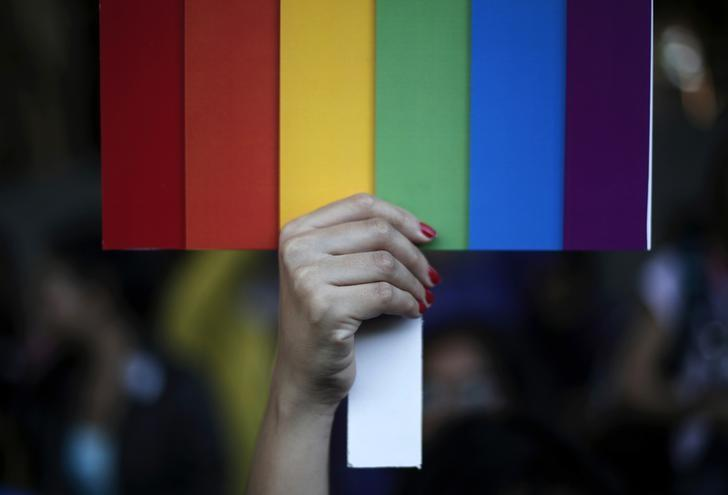 A participant holds a rainbow coloured placard during Delhi Queer Pride Parade, an event promoting gay, lesbian, bisexual and transgender rights, in New Delhi November 30, 2014. REUTERS/Adnan Abidi/Files