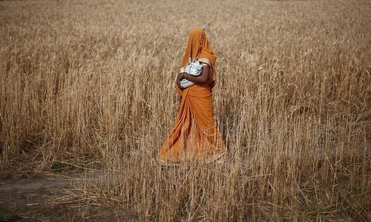 A woman carries her baby as she walks through a wheat field, in Amroha district in Uttar Pradesh April 17, 2014. REUTERS/Adnan Abidi/File Photo