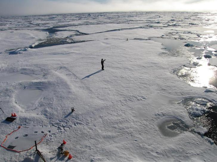 A member of a team of Cambridge scientists walks on some drift ice 500 miles (800 km) from the North Pole September 3, 2011. REUTERS/Stuart McDILL