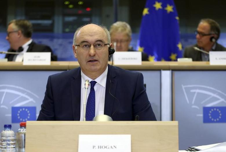 European Agriculture and Rural Development Commissioner-designate Phil Hogan of Ireland speaks before the European Parliament's Committee on Agriculture and Rural Development at the EU Parliament in Brussels October 2, 2014. REUTERS/Francois Lenoir/Files