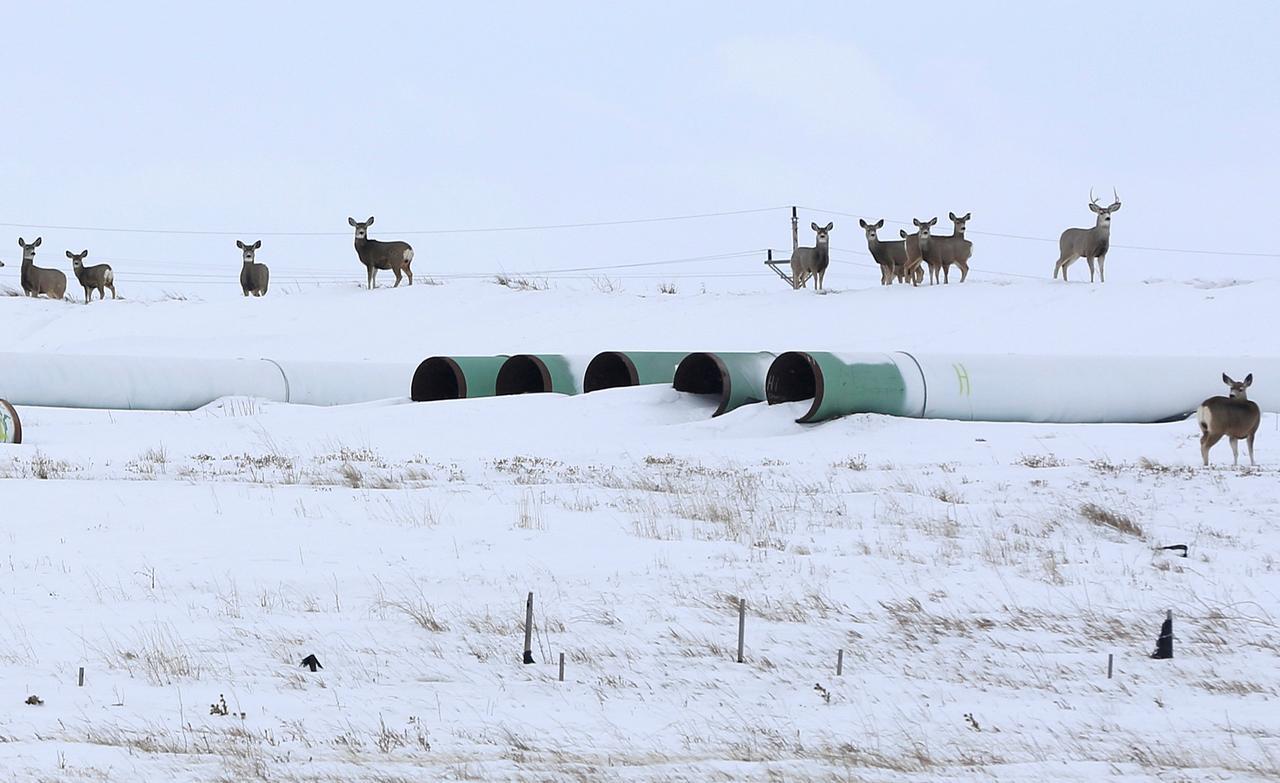 Keystone Xl Pipeline A Canada First Energy Plan Reuters