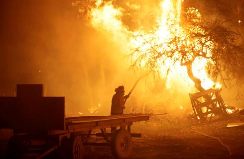 Historic wildfires in Chile