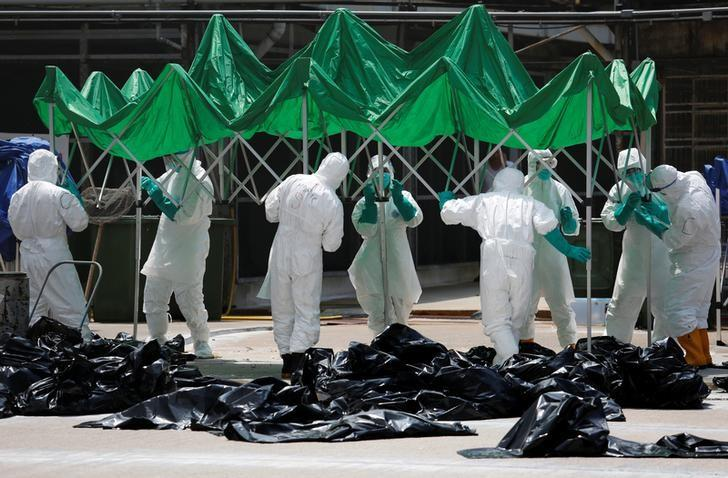 Health officers set up a marquee as they cull poultry at a wholesale market, as trade in live poultry suspended after a spot check at a local street market revealed the presence of H7N9 bird flu virus, in Hong Kong June 7, 2016. REUTERS/Bobby Yip