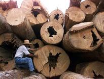 Imagen de archivo de unos maderos marcados para inventario en Itacoatiara, Brasil. El productor brasileño de papel y celulosa Suzano subirá los precios de la pulpa para clientes en China en 30 dólares, a 660 dólares por tonelada, a partir del 1 de abril, dijo la empresa el lunes. Reuters/ Paulo Whitaker